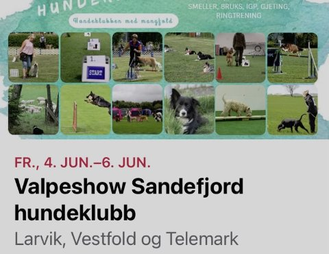 AVLYSER TROLIG: Dette er annonsen som Sandefjord hundeklubb rykket inn på sin Facebook-side. Larvik kommune sier arrangementet er ulovlig.