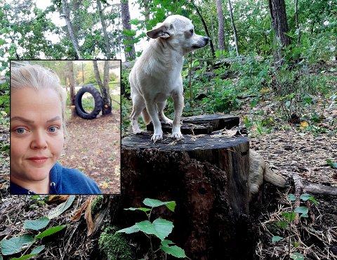 SKADER HUNDENE: Siri Solberg etterlyser hjelp fra kommunen til å få fjernet farlige stubber.