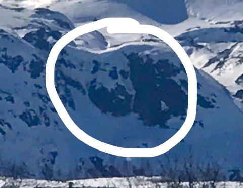 SER DU HVEM? Dette synet måtte ekteparet Haaland på Vågslid fredag.