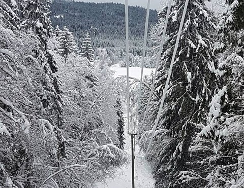 HEGNER: Glitre advarer mot lavthengende strømledninger etter det enorme snøfallet.