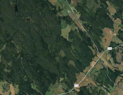 Hogst i kommuneskogen ved Gjerstad (øst for Lionshytta) skjer i disse dager.