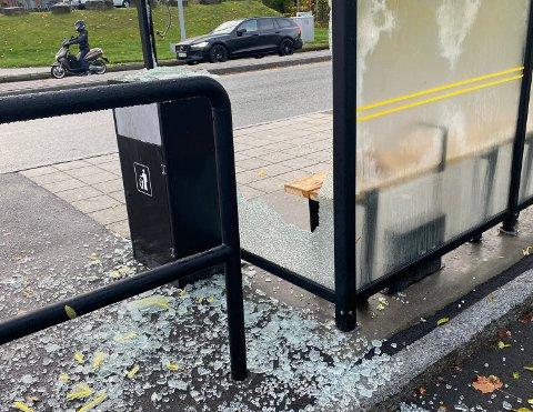 HÆRVERK: Totalt sett er det 143 busskur langs fylkesveger og riksveger. Kostnadene for å erstatte knuste glassvegger er godt over en halv million kroner i året.