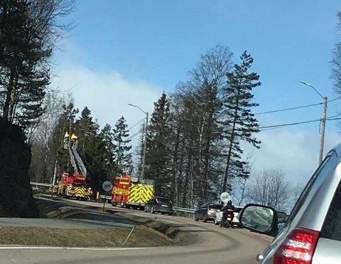 FJERNET TREET: Her er mannskaper i gang med å fjerne treet som falt over riksvei 22, like ved Mortens Kro. Treet er nå fjernet.