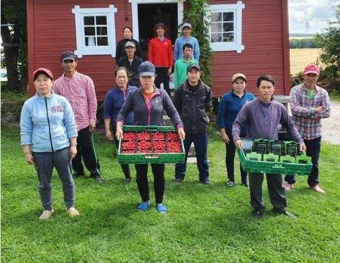 Her er 13 av de 16 fra Vietnam som kom til Råde i juni, tidsnok til å rekke bringebærsesongen.  Nå er arbeidsoppgavene snart slutt for i år. Ingen vet når sesongarbeiderne kan reise hjem.  Foto: Privat