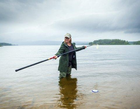EN VIKTIG JOBB: – For å få en god vannprøve må man bruke sterile flasker og s   tang, så må man ut fra vannkanten og en armlengde ned i vannet, sier Jenny Thorkildsen. Foto: Ylva Seiff Berge