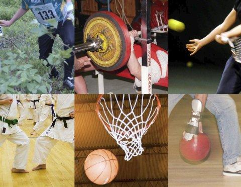 LOVBRUDD: 15 idrettsklubber i Halden klarer ikke oppfylle Idrettens eget lovverk når de velger styre.