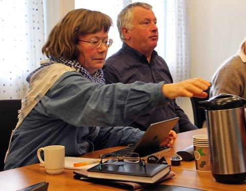 Margit Steinholt (Rødt) stemte mot deltakelse i samarbeid om fastlandsforbindelse under Alstenfjorden, mens Peter Talseth (Sp).