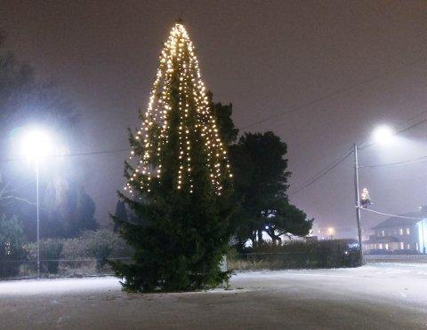 DU GRØNNE GLITRENDE TRE – HALLO!? Innbyggere på Halmstad har reagert på at juletrebelysningen på treet utenfor Tyrolerhuset ikke rekker treet lenger enn til «livet».