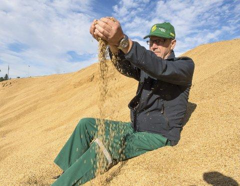 Utelager: Disponent Petter Gryttenholm har i høst måtte ty til utelagring av korn fordi kapasiteten ved kornsiloen er sprengt.