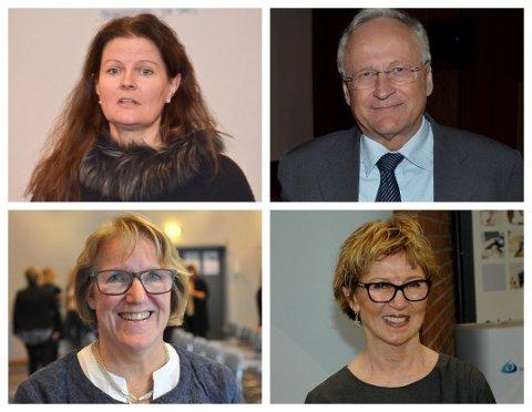 MØTER KOMMUNENE: Øverst fra venstre: Cathrine M. Lofthus (administrerende direktør HSØ), Svein Gjedrem (styreleder HSØ), Alice Beathe Andersgaard (administrerende direktør SI) og Toril B. Ressem (styreleder SI).