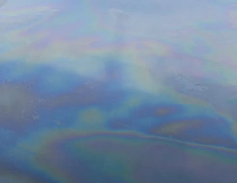 OLJESØL: Bildet er tatt fra gangbrua i Tønsberg. – Det lukter olje eller båtbensin, sier tipser.