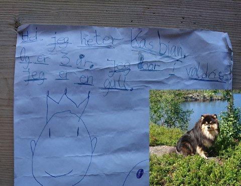 Den finske lapphunden Olvi fant i helgen en flaskepost i Steinsetfjorden. Den ble funnet på land på sørsiden, noen hundre meter øst for Melvins plass.