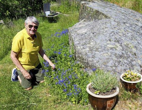 MANGFOLD: Svein Åstrøm dyrker blomster ved kanten av et fordums steinbrudd og midt i naturens botaniske prakt.