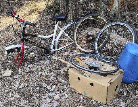 Denne sykkelen er henslengt en kilometer unna søppelplassen. Foto: Privat