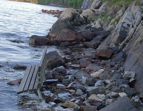 VELTET: Det er ikke her benken pleier å stå - men på plenen et stykke ovenfor. Nylig ble den veltet over stupet, og ble liggende i vannkanten.