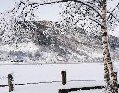 SNØ: Snøen har lagt seg over heile fylket, slik som her ved Sande i Sunnfjord. Det blir mildare tysdag, og vegtrafikksentralen åtvarar om at vegane kan bli glatte.