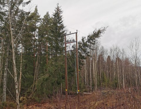 VINDFALL: Her har et tre falt over en strømlinje ved Bæreiavegen.