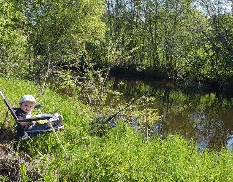 IDYLL: Fiskekos ved Nitelva der friluftsliv og pappaperm blir kombinert med fiske etter stam.