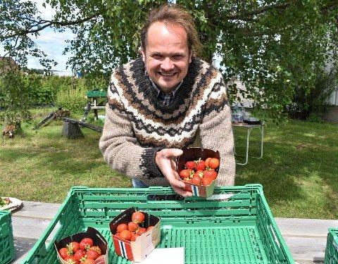 PÅ TAMPEN: Hans Olav Moskvil håper å ha plukket og solgt rundt 80 tonn jordbær når sesongen er kommet til veis ende. Det er om et par-tre uker.