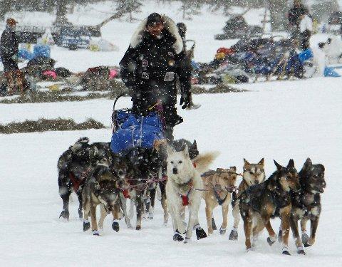 EN AVTALE MED HUNDENE: Lance Mackey har ennå ikke tilgitt seg selv at han måtte bryte Iditarod i 2016. Nå satser han alt på å kunne delta i verdens største hundeløp neste år. – Det skylder jeg hundene mine, sier han.