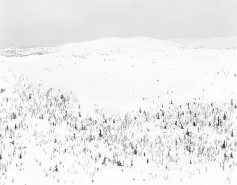 """UTSTILLING: Fredag åpner Galleri Riis dørene for en ny utstilling med bilder av Per Berntsen. Galleriet har kalt utstillingen «May 1985 - Landscapes from Eggedal» Her bildet som i katalogen heter """"View nr. 13, Eggedal, 1985/2020"""""""
