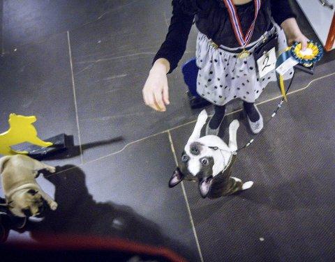 HOPPAR OG SPRETT: Hunden Lucky og Kristiane Kvalter sikra seg andreplass i konkurransen.
