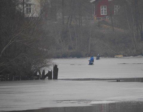 På tynn is: FBs journalist Øivind Lågbu tok dette bildet ved Ågårdselva, Solli bruk, forrige helg. Tre-fire isfiskere hadde dristet seg utpå.