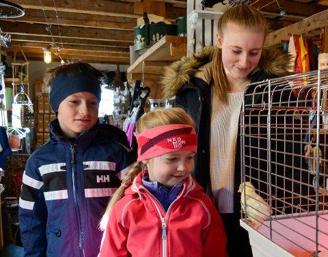SÅ SØØØØT: Sondre Pettersen (fra venstre), Adine Pettersen og Mira Fredriksen ved kyllingsburet i fjøskafeen på Bondegården i Råde.