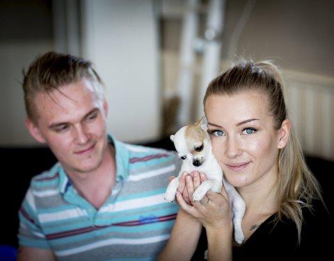 Ble bare ti uker gammel: Den lille chihuahuavalpen sammen med Espen Fjellheim og Seline Nordhammer. Foto: Lisbeth Andresen