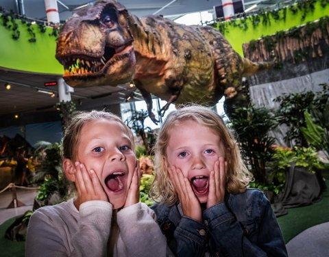 Adele Marie Røragen Hermansen (9) og Astrid Sommerfelt (9) syntes dinosaurus-utstillingen i fjor var helt topp. Nå får sarpinger og tilreisende en ny sjanse.