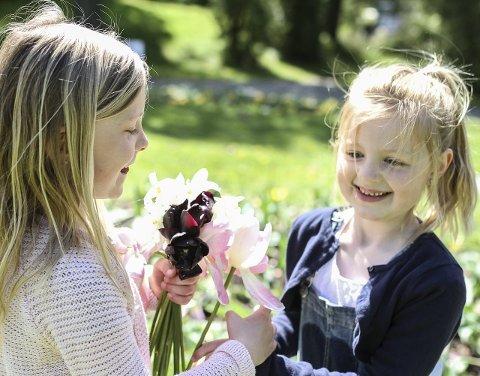 Plukking: Det er gøy å plutselig få lov til å plukke blomster fra bedene, og det var mange som ville.