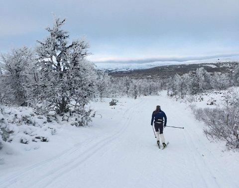 FLOTT FORHOLD: Vingelen kan tilby skiforhold på natursnø allerede. Her er langrennsløper Magni Smedås ute for å finpusse formen før sesongåpningen på Beitostølen om snaue tre uker.