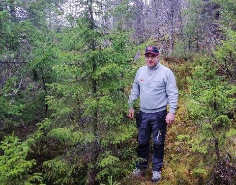 JULETRE: Jan Arne Flugekvam tilbyr sjølvhogst av juletre på eigedomen sin til alle som har betalt parkeringsavgift i Flugedalen i år.