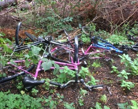 TRIST SYN: Elisabeth Rasmussen oppdaget disse syklene i Rambergveien på Jeløy denne uka. – De som har gjort det burde skamme seg, sier hun.
