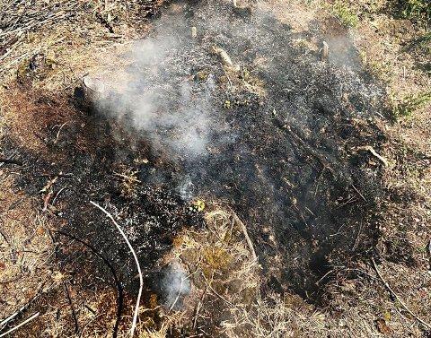 ARKIVBILDE: Slik kan en ulmebrann se ut. Bildet er tatt i forbindelse med en annen hendelse.