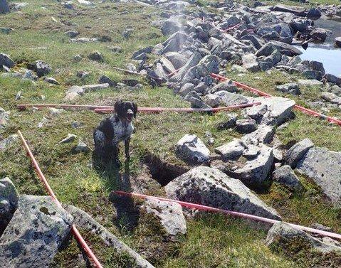 Bård og kona fant mengder med brøytestikker av plast i fjellet.