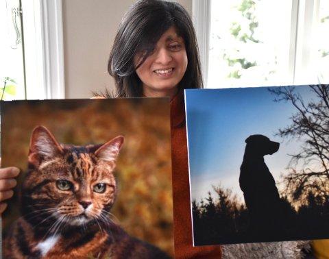 Dyrene sett med Fatimas blikk: - Fotografiene lar meg se detaljer, forteller Fatima Kenny som begynte med dyreportrettering i England rundt 2013. Katten Sookie er med på mange av bildene, og hun forsøker seg og på detaljbilder og silhuetter, som av denne hunden.