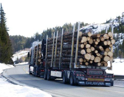 God utvikling: Allskog forbedret sitt driftsresultat med 17 millioner i fjor, sammenlignet med 2015.  Foto: Therese B. Kirkesæther  ALLSKOG SA leverte et årsresultat på 20,1 millioner kroner for 2016, som er det beste siden de seks skogeierforeningene nordenfjells slo seg sammen i 1998.   Tømmerprisene har hatt en god utvikling inn i 2017. Det er derfor god grunn til å glede seg over fremgangen for både ALLSKOG spesielt og skognæringen generelt. ALLSKOG leverte 1,17 millioner kubikk tømmer til industrien i fjor.   Driftsresultatet var 18,8 millioner, en forbedring på 17,0 millioner fra 2015. «Årets resultat kommer som følge av hardt arbeid, effektivisering av rutiner og logistikk, samt sterkere kostnadsstyring gjennom de siste årene. ALLSKOG vil fortsette å snu på flisa for å arbeide bedre», kommenterer styreleder Eilif Due.   ALLSKOGs innsats for å forbedre rammebetingelsene for skognæringen er også viktig for lønnsomheten. Stadig mer tømmer kan kjøres med 60 tonns tømmervogntog, hvilket gir store besparelser.   På årsmøtet i 2016 bad ALLSKOGs eiere om hardere tak. «Formålet med selskapet er å sikre tømmerpris og avkastning til våre eiere. Det har vi gjort», sier styreleder Eilif Due. «Styret er svært godt fornøyd med innsatsen i 2016. Styret foreslår å betale ut utbytte til andelseierne.»   Snorre Fridén Furberg begynte i oktober som administrerende direktør, og er godt i gang med å effektivisere selskapet ytterligere.   «Vi vil rette en stor takk til selskapets ansatte. Styret har klare forventinger til at vår nye administrerende direktør Furberg sammen med sine medarbeidere kommer til å gi eierne mer for skogen», avslutter Due.