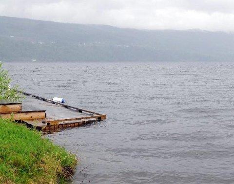 HØY VANNSTAND: 2013 var sist gang Randsfjorden gikk over breddene.