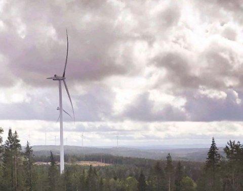 Det er ingen bevegelse i vindmøllene om dagen. ARKIV