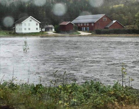 OVERRASKET: Janne Aasbø Johansen ble overrasket over hvor høy vannstanden var.