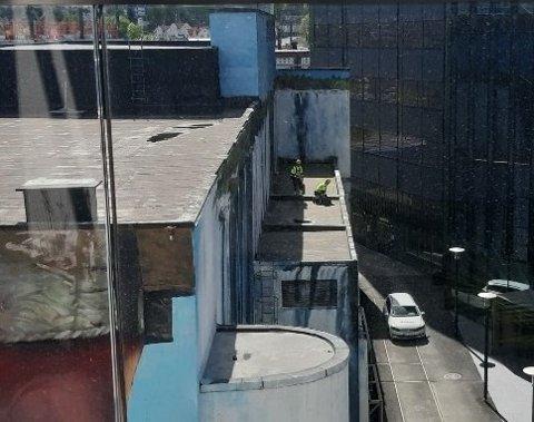 FJERNET: Her fjerner to personer et måkereir på taket til trafostasjonen tilknyttet Glitre Energi. Bildet skal være tatt 11. mai.