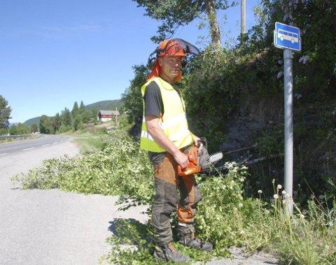 Avskoging: Avskoginga har kome såpass langt at anleggsarbeidet på gang- og sykkelvegen snart kan begynne. Her er Emil Listrud i Valdres Skog i gang med motorsaga ved busshaldeplassen.