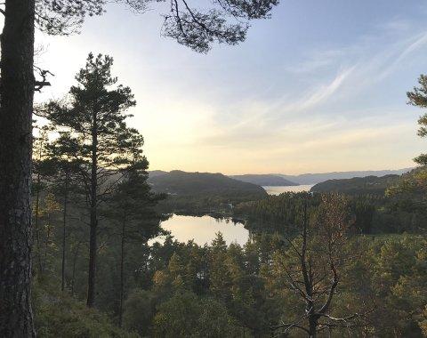 Frå stien: Utsikt frå benken som er sett opp ved stien om du veljer ruta om Skråfossen. Foto: Benedicte Midthaug Torsvik