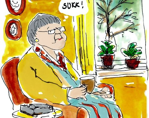 Ingen idyll: – Det er på tide å slå hull på forestillingen om at pensjonister har det «bra nok» eller egentlig «for bra», skriver Finn Åsmund Johnsbråten. (Arkivtegning: Jørn Grynnerup)
