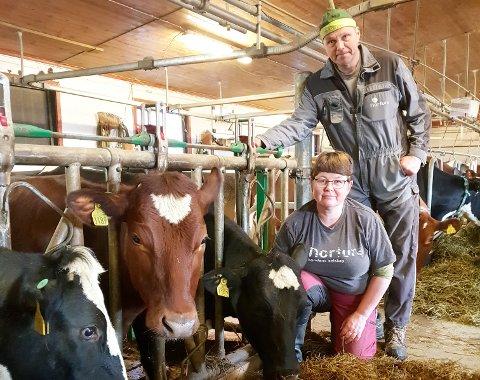 Barbro Braastad og Bjørn Sønstevoldhaugen driver med melk og storfe i Fåvang.  Barbro mener Norge har et etisk ansvar for å produsere sin egen mat.