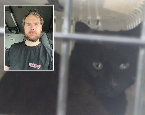 RYSTET: Andre Crowo Johnsen fikk seg en uhyggelig opplevelse på E 134 i Skjold. Ett av ofrene var denne kattemoren.