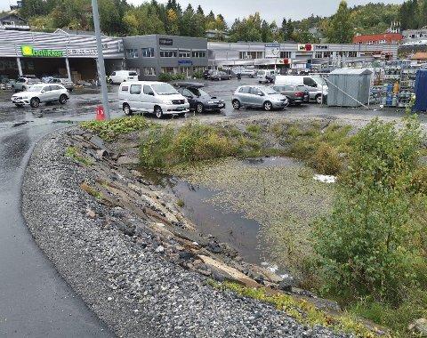 Salamanderdam: Tvedestrand kommune sa i fjor ja til at Kjell Lunde kan fylle igjen denne dammen på Bergsmyr og etablere flere parkeringsplasser. Nå har de endret mening. Arkivfoto