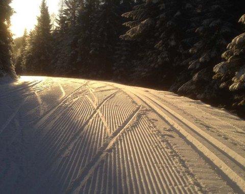 FINE FORHOLD: På årets korteste dag er skyggene lange, og skiføret fint fra Kanada i Lier.