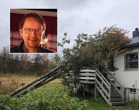 SMALT I VEGGEN: Onsdag morgen måtte det 60 år gamle rognetreet gi etter for den kraftige vinden som har herjet i Finnmark.